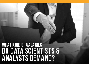 What Kind of Salaries do Data Scientists and Analysts Demand?